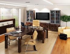 Мебель для кабинета руководителя Дипломат