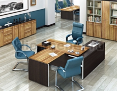 Мебель для кабинета руководителя Эгоист