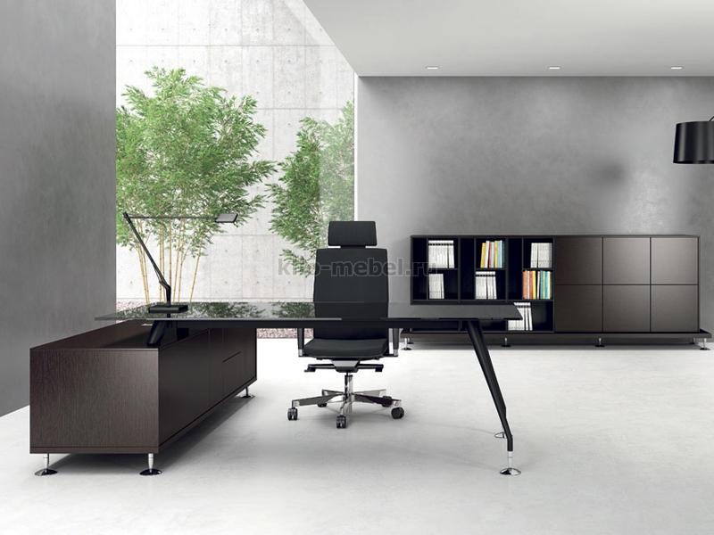 Офисная мебель руководителя Enosi Evo